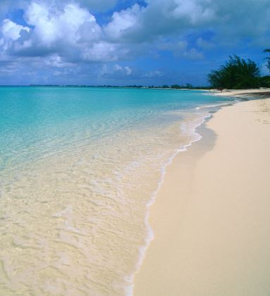 New York City with Statue of Liberty