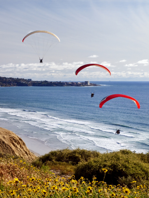 Paragliding over La Jolla California