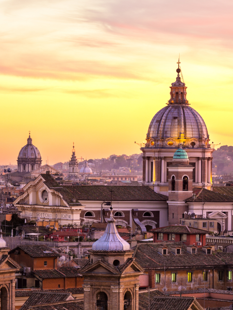 Rome skyline with church cupolas