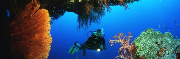 Scuba Vacation Packages with Marriott