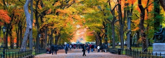 Central Park New York City Fall